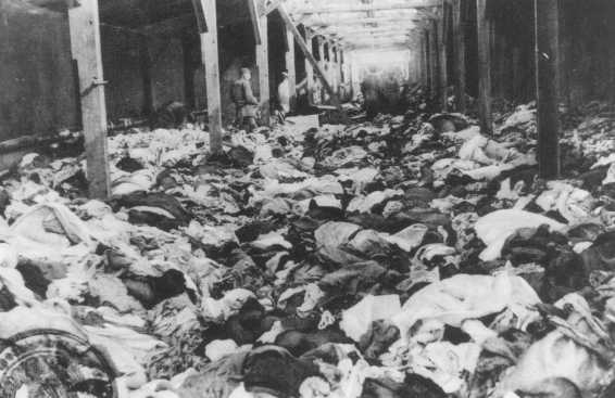 dehumanization during the holocaust This research paper dehumanization of the holocaust and other 63,000 the dehumanization and the erosion of moral identity and humanity during the holocaust.